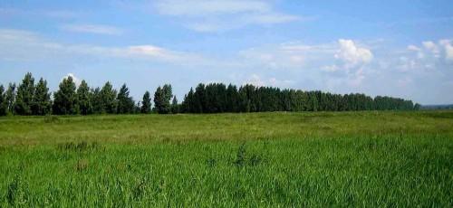 В Башкирии приняли поправки в закон «О регулировании земельных отношений в республике»