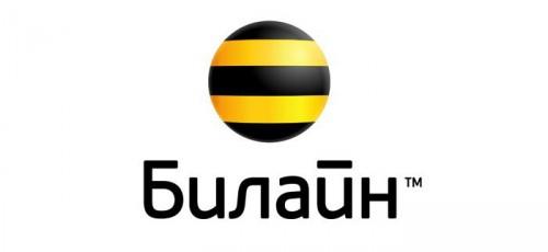 О совершенствовании сети – в интервью с директором Уфимского филиала «ВымпелКом» (бренд «Билайн») Андреем Ратошнюком