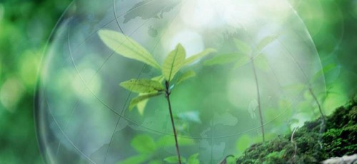 Рустэм Хамитов предложил пути решения главных природоохранных проблем Приволжского Федерального округа