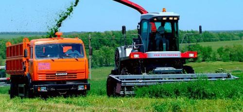Инвесторам сельскохозяйственных проектов вернут 20% затрат