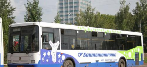 В Уфе прошла операция «Автобус»: за сутки выявлено свыше 250 нарушений