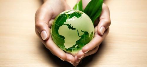 В республике обсудили вопрос создания международного экологического центра