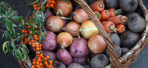 Мед, помидоры и лук. В Уфе стартовал ярмарочный сезон