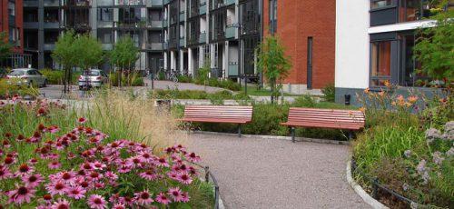 Городское развитие подчинится стандартам