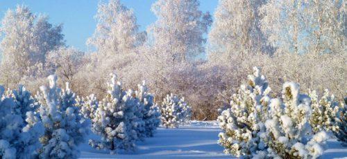 Чего ждать от 21 декабря, и как правильно к нему подготовиться?