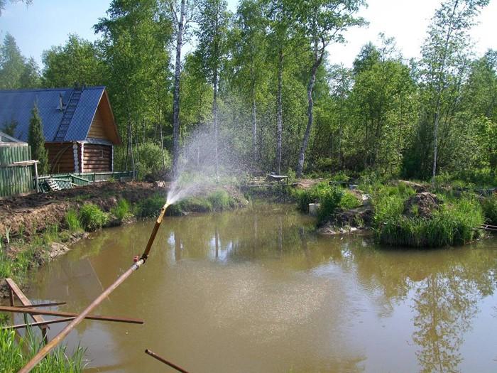 Как организовать пруд для платной рыбалки? Пошаговый 63