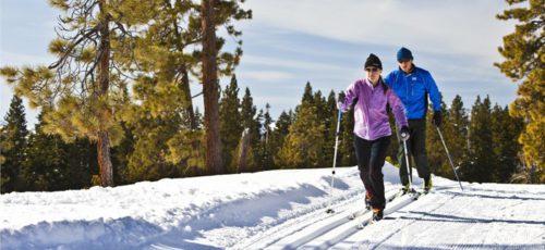 Горные и беговые лыжи. Что доступнее?