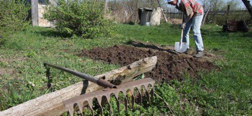Республика внесла пакет поправок в новый федеральный законопроект о садоводстве и дачном хозяйстве