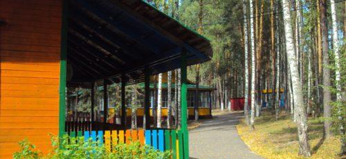 В Уфе хотят разработать программу по развитию загородных детских лагерей. По мнению сити-менеджера, сегодня дети отдыхают в «спартанских условиях»