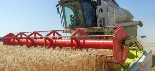 В этом году погодные условия и отсутствие страховки могут серьезно ударить по карману фермеров Башкирии