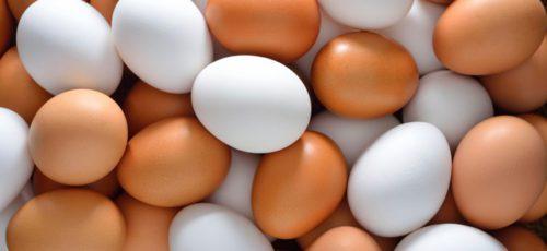 Башкирские яйца на прилавках региона – это показатель развития сельского хозяйства