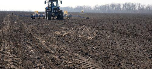 Включение субсидий на страхование сельского хозяйства в единый пакет господдержки и неготовность нормативной базы уронили рынок агростраховки