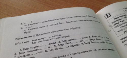 На сохранение башкирского языка выделят десятки миллионов рублей