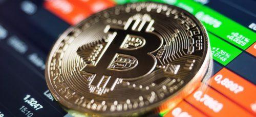 Стоит ли сейчас вкладываться в криптовалюты?