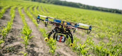 В Башкирии действует господдержка на приобретение сельскохозяйственных дронов и беспилотников. Предприниматели считают подобные инновации неоправданными