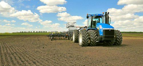 Как не прогадать с ценой на урожай: что лучше всего сажать аграриям в этом году, чтобы не сбывать товар по себестоимости?
