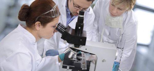 Омоложение науки. Башкирия стала первым регионом России по объему выделенных средств на грантовую поддержку молодых ученых