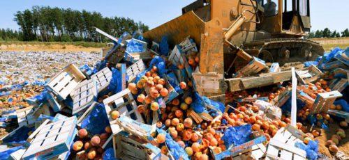 С начала года в Башкирии уничтожили свыше 400 кг санкционных продуктов