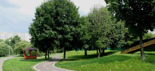 Строительство километра велодорожки обходится Уфе в несколько миллионов рублей