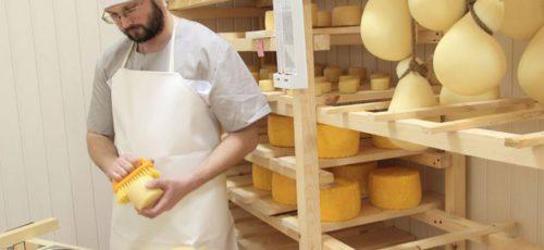 Башкирские фермеры – одни из лидеров по производству домашних сыров, но реализовать их в республике проблематично