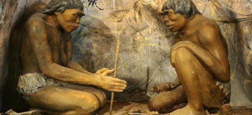 Человек прямоходящий Homo erectus вымер из-за лени
