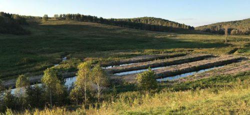 В Башкирии запустили форелевое хозяйство стоимостью 12 млн рублей