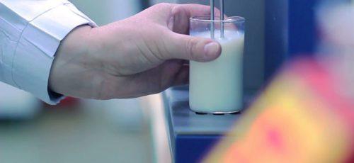 Молоко, земля и вода: участники Science Slam Russia рассказали о своих проектах