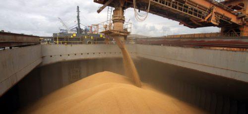 Башкирия впервые за восемнадцать лет экспортировала по воде почти 50 тысяч тонн зерна