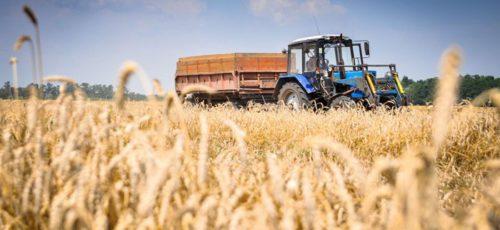 Два года в сельхозкооперации: Башкирия обошла Татарстан и теперь лидирует в стране. Однако фермеры неохотно садятся за стол переговоров, муниципалитеты мало уделяют внимания аграриям, а сами сельхозпроизводители испытывают кадровый голод